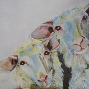 2Schapenkoppen